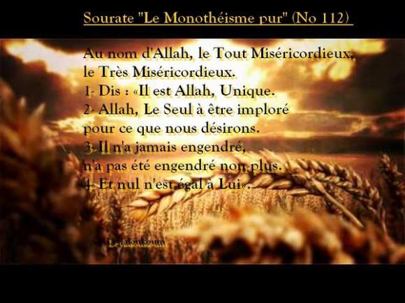 Connu Parole de Sagesse - Nour-al-haqq - Bienvenu Sur Nour-al-haqq - Cowblog BW67